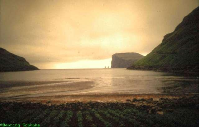Island2001_017