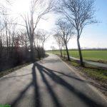 Geltinger Birk – Sehestedt (55 km)