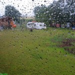 Mittwoch: Lüdelsen, Regen…