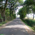 Rerik am Salzhaff (75 km)