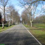 Wischhafen / Elbe (77 km)