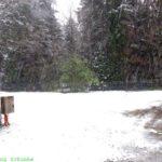 Zum Waschen ins Winterwunderland