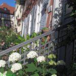 Königsberg in Bayern: Die Stadt, die es trotz Allem gibt